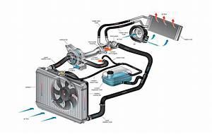 Coolant System Diagram