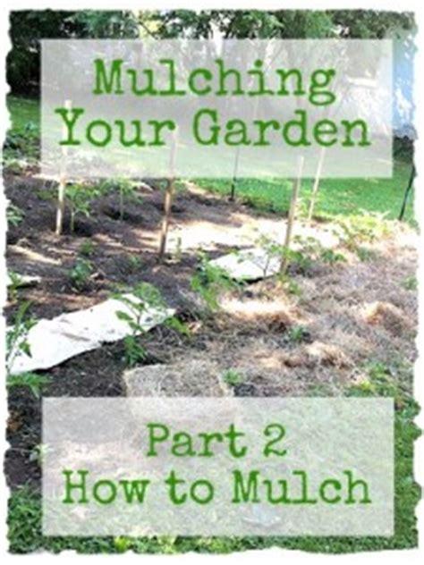 mulching your garden mulching your garden part 2 how to mulch your garden frugal upstate