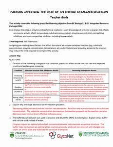 Pre Lab Worksheet Enzyme Catalysis