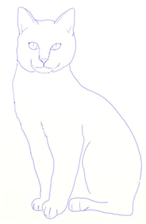 draw  realistic cat draw step  step