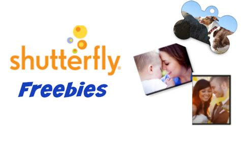 shutterfly contact phone number shutterfly freebies pet tag or prints southern savers