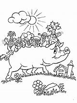 Pig Coloring Potbellied Pages Animals Printable Sheet Animal sketch template