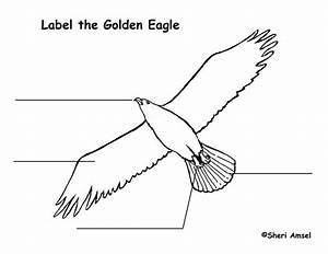 Eagle  Golden  Labeling Page