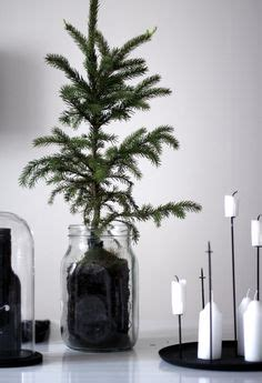 holiday styling images   christmas decorations happy holidays natural christmas