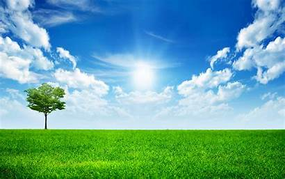 Sunny Bright Wallpapers 1080 1920 Resolutions 2560
