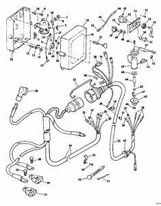 Diagram Evinrude E60tlesm Wiring Diagram Full Version Hd Quality Wiring Diagram Iwiring18 Dinosauri Bora It