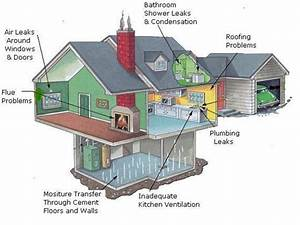 Trusted Mold Remediation In East Lyme