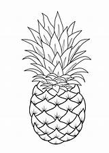Coloring Fruit Printable Pages Pineapple sketch template