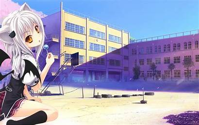 Koneko Anime Toujou Background Dxd Desktop 4k