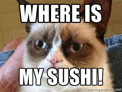 Angry Cat Meme Generator - 16 best images about coc meme on pinterest tim o brien clash of clans and play clash of clans