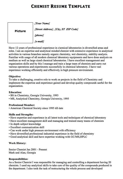 Resume Template Name by 1902 Best Free Resume Sle Images On Free