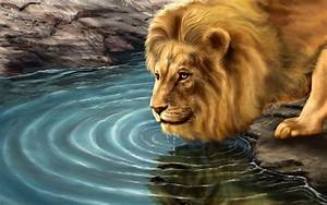 Best 10 Lion Anime HD Photos And Pictures,Wallpaper Free ...