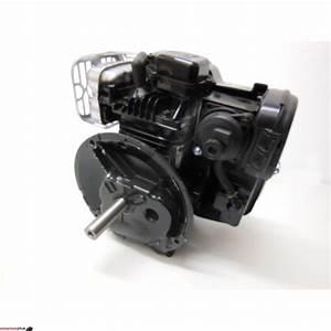 Rasenmäher Briggs Stratton : briggs stratton motor 140cc 550e series ohv 22 2 80 mm kurbel ~ Eleganceandgraceweddings.com Haus und Dekorationen