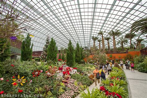 gardens by the bay part 2 flower dome cloud forest