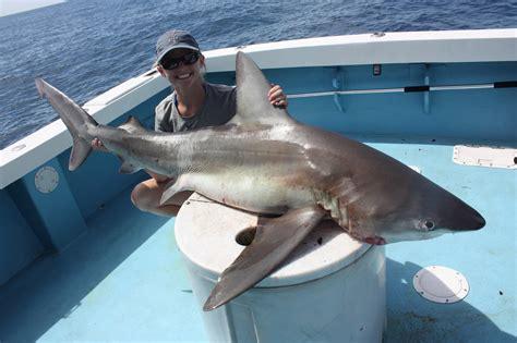fish mahi fishing capt sharks larry charters catching september
