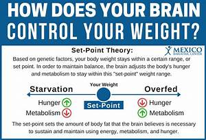 Set Point Theory: Meaning, Definition, and How it Works.
