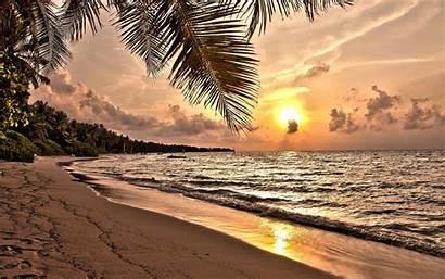 Sunset Beach Tropical Desktop Widescreen Resolutions Standard