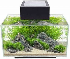 Aquarium Kies Kaufen : nano aquarium kaufen tipps vergleichstest aquarium grundlagen ~ Orissabook.com Haus und Dekorationen