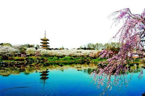 wuhan east lake kicks  cherry blossom festival