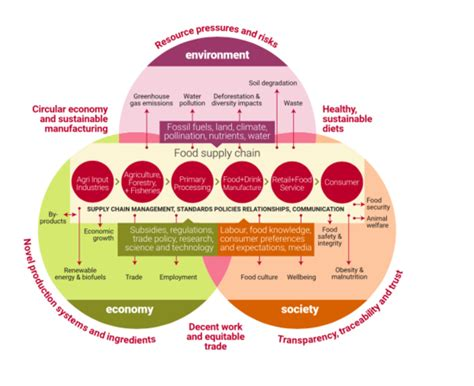 advanced human nutrition sustainable food systems framework 3keel