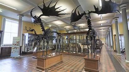 Museum History Dublin Natural Tour Evoke Ie