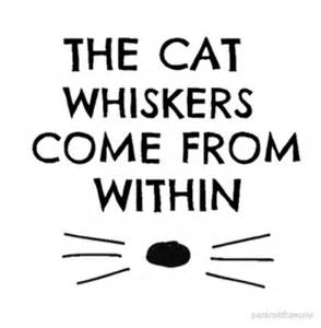 dan and phil cat whiskers quot dan and phil cat whiskers notebook quot photographic prints