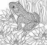 Coloring Paradise Pages Tropical Adult Printable Getdrawings Getcolorings sketch template