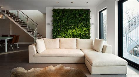 living walls clean air   home ecohome