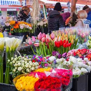 Best Farmer U0026 39 S Market Flowers For Your Home