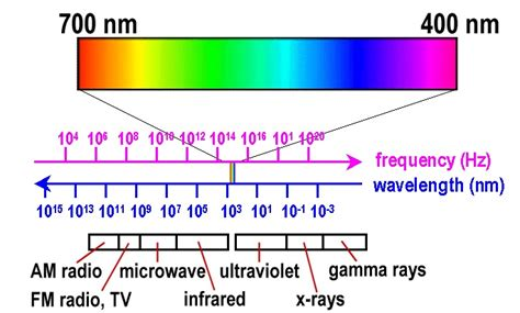Frequency Of Visible Light by Compare The Size Of The Visible Light Spectrum With The
