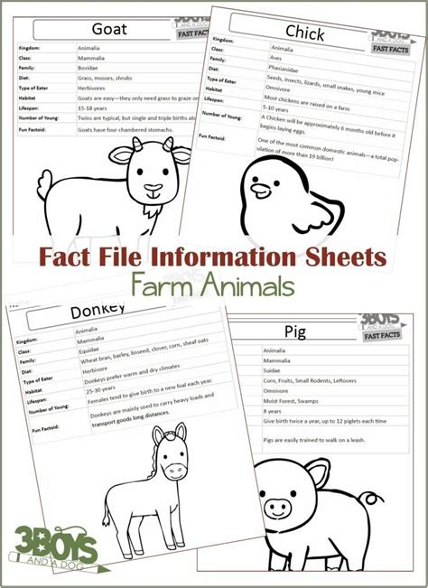 Farm Animals Fact Files - 3 Boys and a Dog, Shop   Animal ...