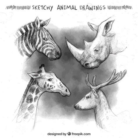 sketchy animal drawings vector