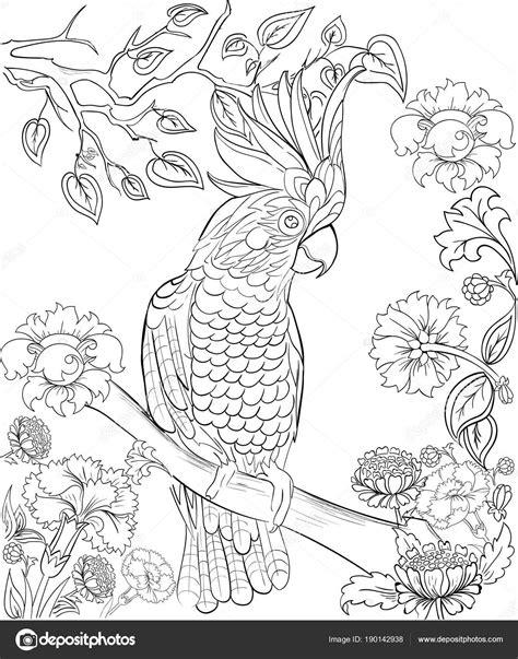 Fp 2000 Vuurwerk Kleurplaat by Kaketoe Papegaai Voor Coloring Boek Antistress