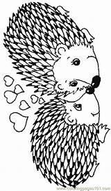 Hedgehog Coloring Hedgehogs Coloringpages101 sketch template
