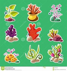 Cartoon Underwater Plants And Creatures Stock Vector ...