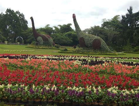 wisata penuh warna warni  taman bunga nusantara