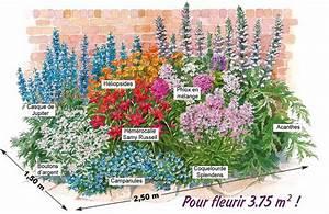 Plantes Vivaces Pour Massif : le massif 39 t fleuri 39 18 plantes vivaces willemse ~ Premium-room.com Idées de Décoration