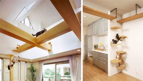 cat house designs spaces for pets inside homes