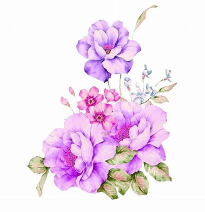 Watercolor Flowers Flower Watercolour Painting Plant Icon