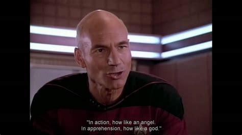 Star Trek Picard Meme - image gallery picard quotes