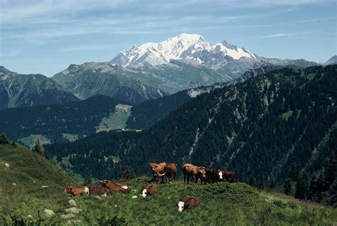 cyclo alpes le tour du mont blanc