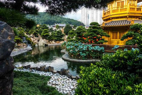 hong kong garden recommendations for five days in hong kong travel past 50