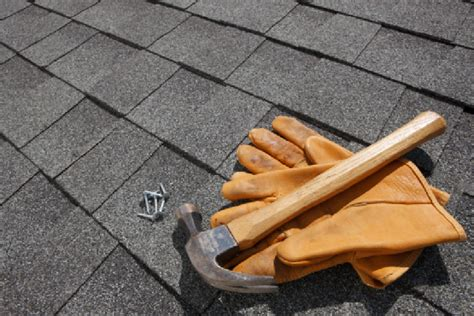 Roof Maintenance Tips For The Fall Architectural Roofing Shingles Prices El Paso Roof Repair San Antonio Coating For Perry Gainesville Fl Snow Guard Metal Fort Lauderdale Infinity Reviews
