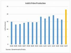 India Lifts 2016/17 Pulse Production Estimates