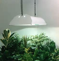 grow lights for indoor plants to create for living space front yard landscaping ideas