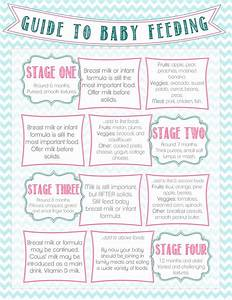 Diary Of A Fit Mommy  Guide To Baby Feeding