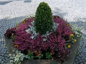 Kübel Bepflanzen Winterhart : k belpflanzen ~ Michelbontemps.com Haus und Dekorationen
