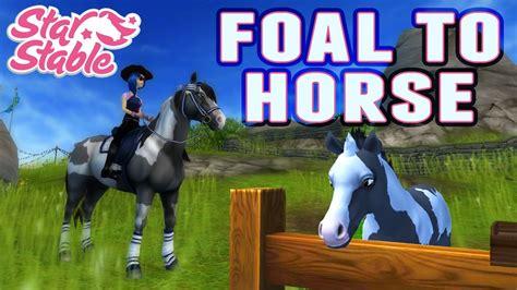 stable horses star app