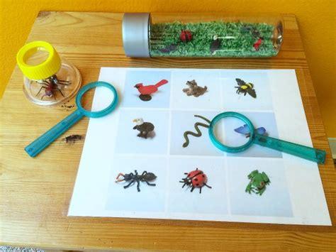 table activities for preschoolers preschool science center science activities for 3 year