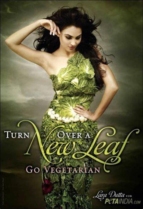 kitaveg news on veg style vege food facts plant based diet veganism vegetarianism